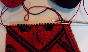 nordic rose-repositioned needles