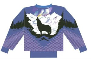 ben's northern light sweater