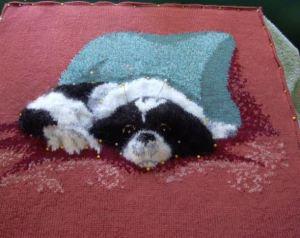 sparky pillow-blocked