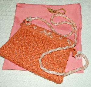 purse and cover bag