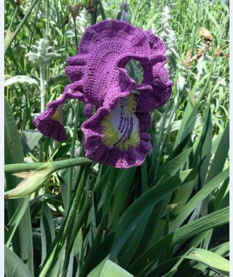 crocheted violet Iris 1